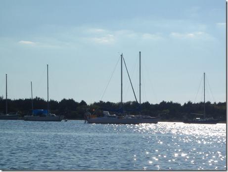 Velocir anchored in Beaufort