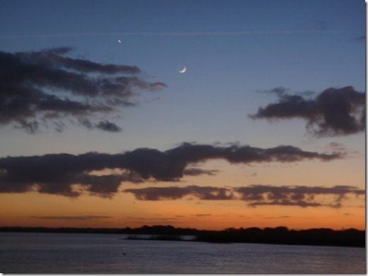 Cumberland Island by Velocir