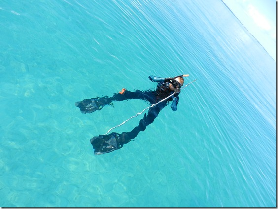 Spearfishing in the Bahamas by Velocir
