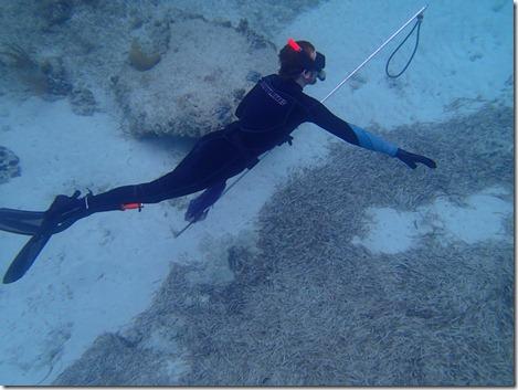 Snorkeling by Velocir